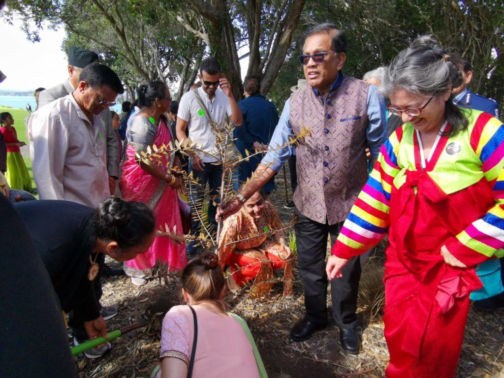 Pancha Narayanan and other Te Tiriti partners plant a kauri tree at Waitangi